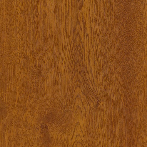 Golden Oak French Door